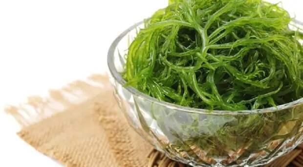 Полезные свойства морской капусты: и интересные рецепты для вашего меню