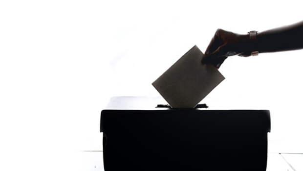 Что надо знать о голосовании по поправкам к Конституции