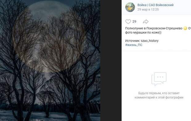 Фото дня: мистический снимок парка «Покровское-Стрешнево»