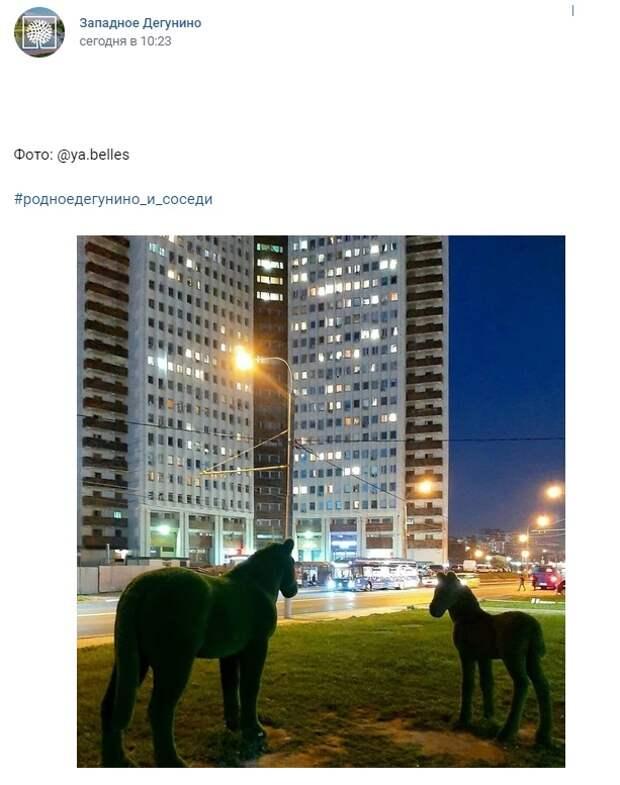 Фото дня: Коровинские лошадки