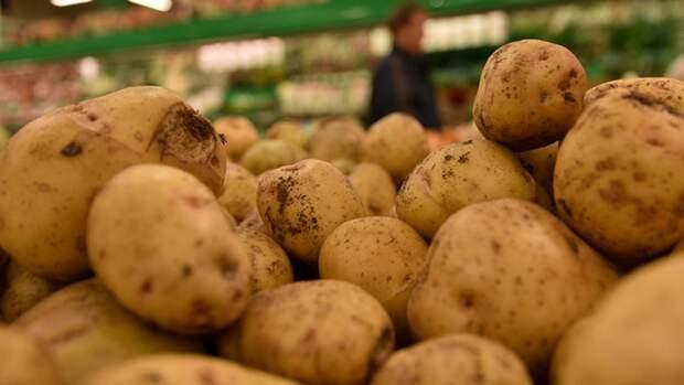 Экономический кризис на Украине вынуждает ВСУ питаться картофелем из России
