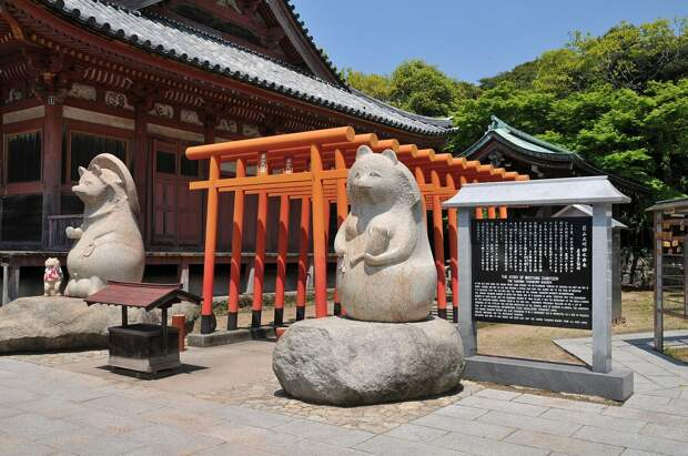 Статуи енотовидных собак у храма