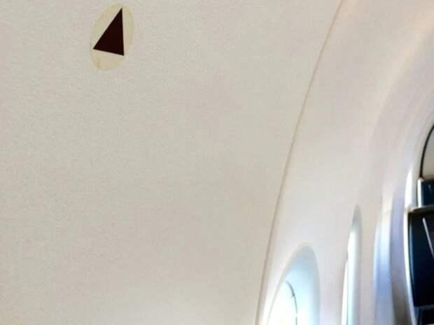 Загадочные черные треугольники над иллюминатором расположены там не зря. /Фото: elcomercio.pe