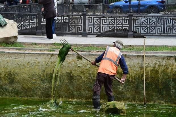 Пруды симферопольского горсада очищают от тины