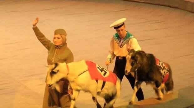 Мартышка и козлы со свастиками в Удмуртии
