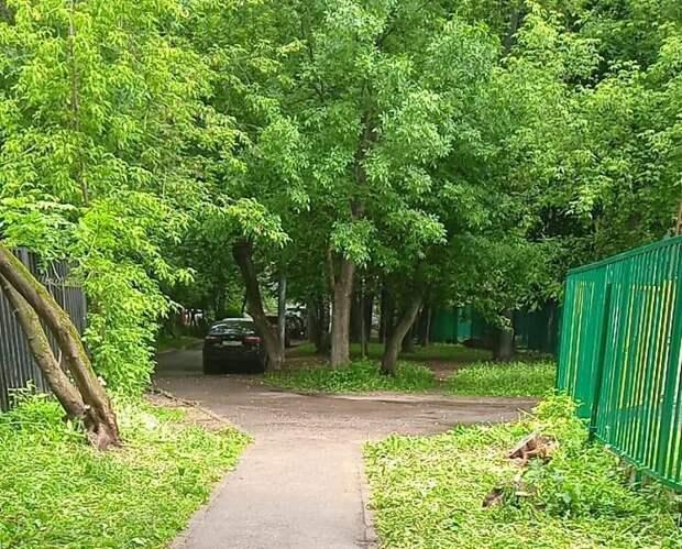 Двор на Ленской привели в порядок