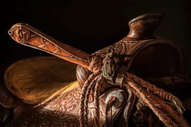 Кнут - оружие необычное, но эффектное. /Фото: viewbug.com