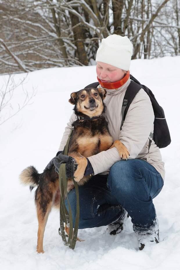 Хозяева бросили песика с необычной мордахой на железнодорожной станции история, пес, собака, станция
