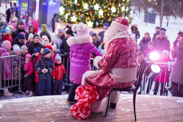 Новый год в парках СВАО: предпраздничное голосование началось на «Активном гражданине» Фото: пресс-служба Лианозовского парка