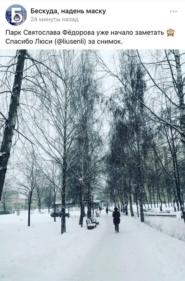 Фото дня: зима заметает парк Федорова