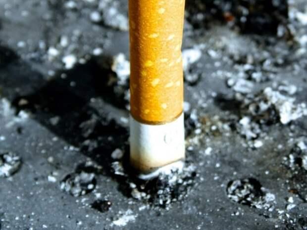 Управделами президента закупило сигареты на 19 млн рублей