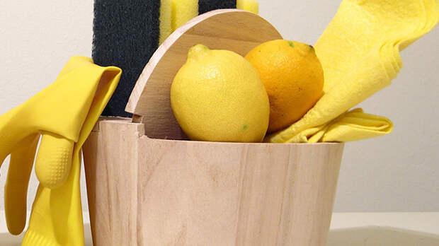 Экологическая уборка дома – советы как убирать дешево и натурально