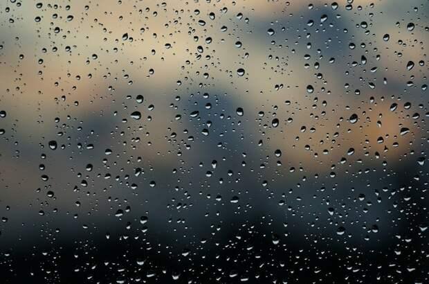 В Московский регион придут дожди и ветер