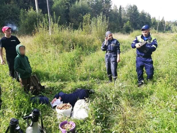 Бабушка с внуком заблудились в лесу в Удмуртии