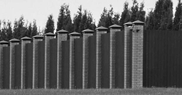 Забор Медведева