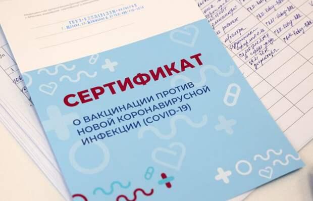«Форма принуждения»: что сказано в докладе Москальковой о ковид-паспортах
