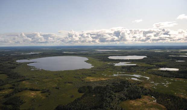 Две перспективные науглеводороды зоны нашла «Росгеология» наГыдано-Хатанге
