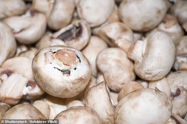 Две порции грибов в неделю в разы сокращают риск слабоумия в старости
