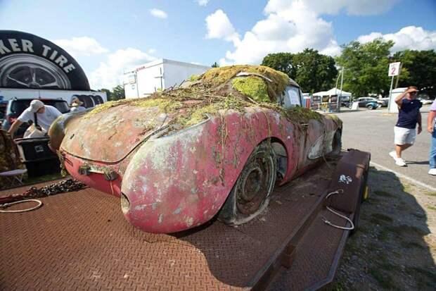 Corvette's - 50 лет забытья в лесу! Клумба на колесах, а в гараже рядом, 60 лет стоял второй бедолага chevrolet, chevrolet corvette, chevy, corvette, авто, находка, олдтаймер, ретро авто