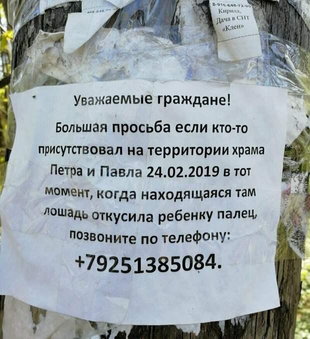 Конкурсы интересные в россии, надпись, объявления, прикол, смешно, смешные объявления, фото