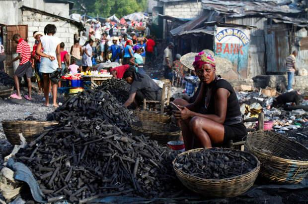 Почему на западе острова Гаити лес не растет, а на востоке густые тропики