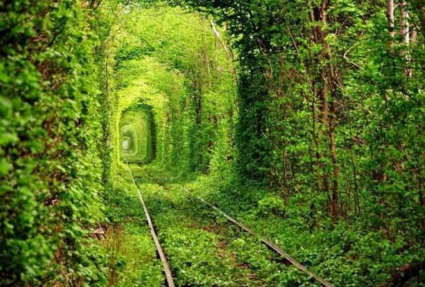У природы богатая фантазия