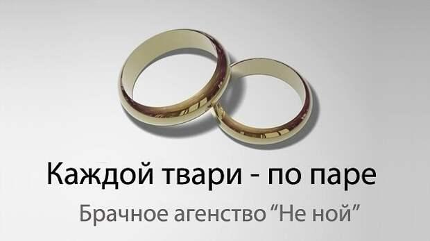 Визит дамы в брачное  агентство