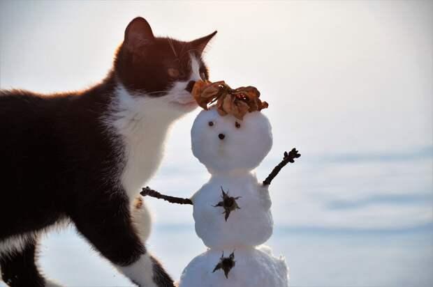 Теплые выходные сменятся морозами в Удмуртии