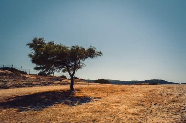 Последний день июня в Удмуртии выдастся жарким