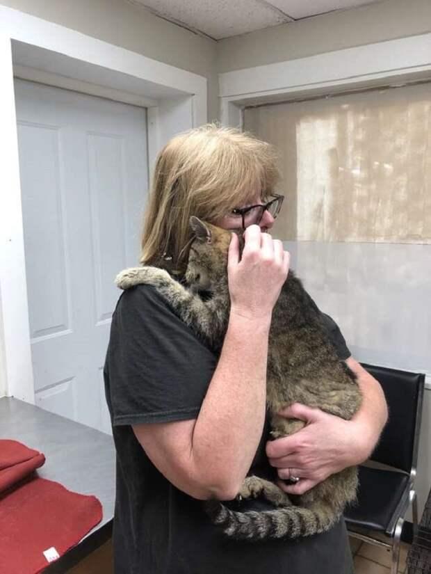 Кот обнимает женщину