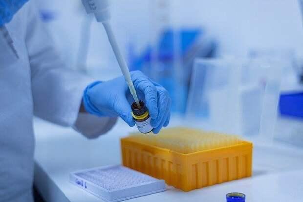 Глава «Вектора» рассказал о людях, не чувствительных к вакцинам — Известия