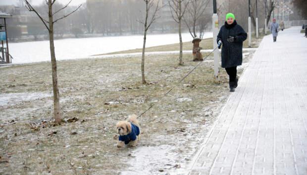 На выходных жителей Московского региона ждет потепление и осадки