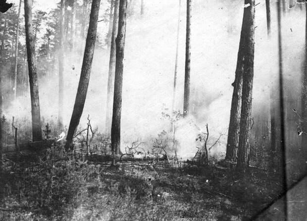 Лесной пожар в Верхотурском уезде. Фото из экспедиции М.А. Павлова. 1910-е гг.