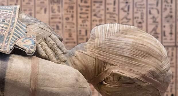 В Египте впервые обнаружили мумию в глиняной оболочке