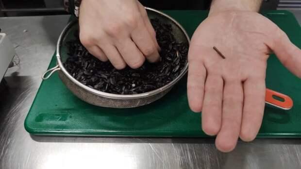 Как прорастить микрозелень из семечек подсолнечника