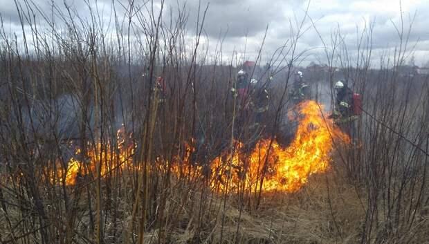 В микрорайоне Кузнечики ликвидировали возгорание травы на пустыре