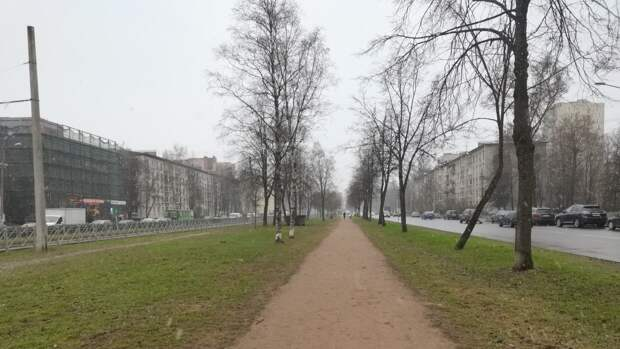 Почти 380 тысяч тонн смета вывезли из Петербурга за неделю