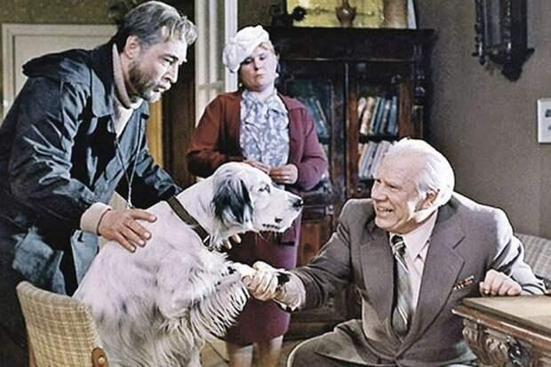 Как сложилась судьба собаки из фильма «Белый Бим – черное ухо» после съемок картины