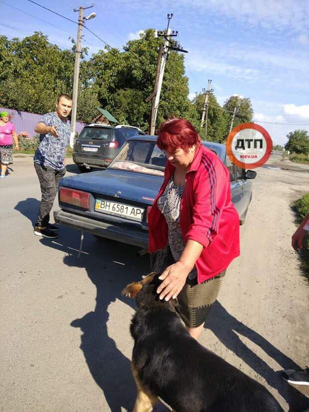 Она решила избавиться от своей старой собаки - и уже привязала ее к бамперу...