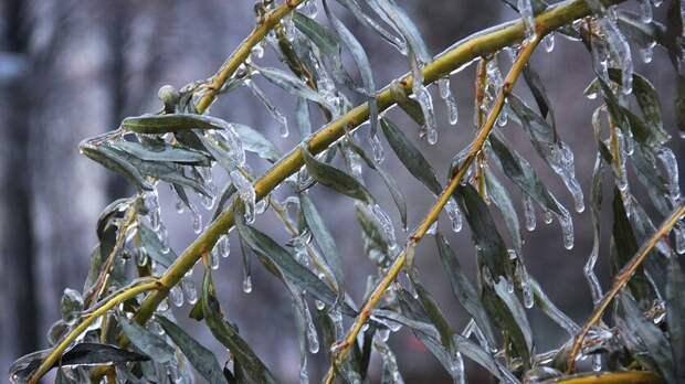 Грозы, дожди иград пройдут поРостовской области 19сентября