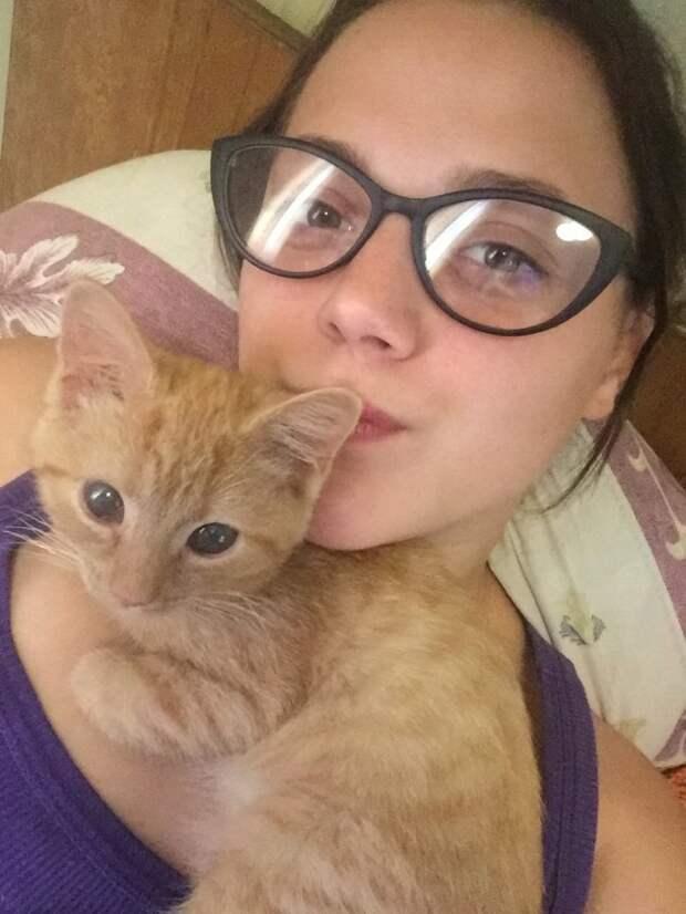 Крошка-котенок забился под машину и плакал от страха история, котенок, приют, рыжий котенок