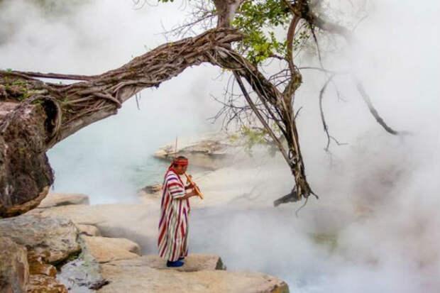 Река в джунглях Амазонии, которая кипит