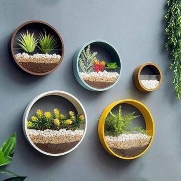 Такие настенные кашпо для растений не составит труда собрать самостоятельно.