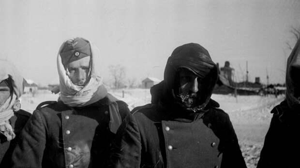 Картинки по запросу Вши, тиф и Гитлер. Как погибли немецкие пленные Сталинграда?