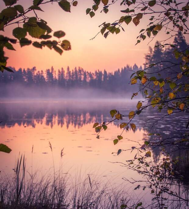 Душа требует тишины.
