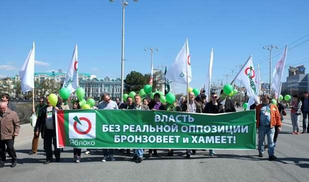 Муниципальные депутаты против голосования за поправки президента к Конституции РФ