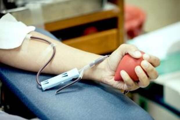 Как питаться перед сдачей крови и после нее?