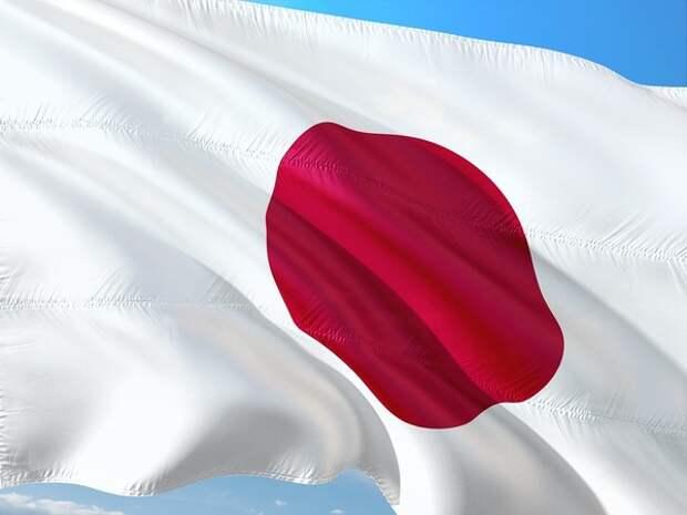 Япония выразила протест России из-за визита чиновников на Курилы