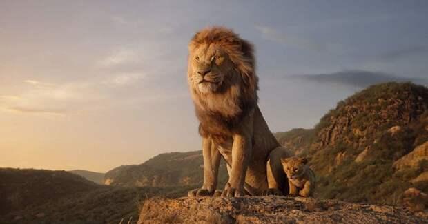 Disney снимет продолжение ремейка «Короля Льва»