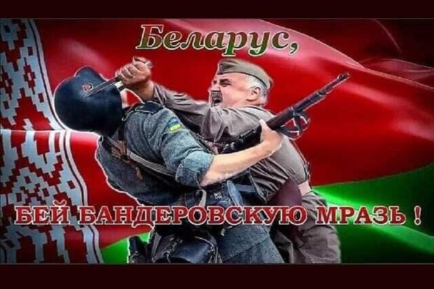 Беларус, бей бандеровскую мразь!